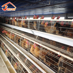 High Capacity National standard steel wire mesh battery cages laying hens