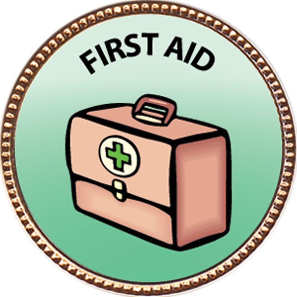 """First Aid Award, 1 inch dia Gold Pin """"Special Knowledge Collection"""" by Keepsake Awards"""