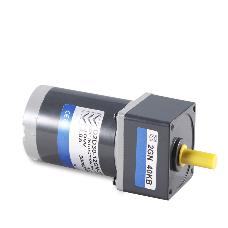 Permanente magnetic DC brushed gear motor