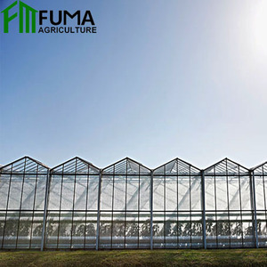 China Good Quality Multi Span Venlo Type Plastic PC Sheet Greenhouse for Tomato Cucumber