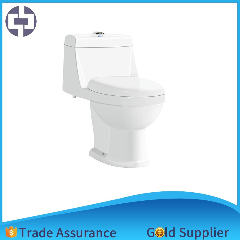 Clear rimless wall hung toilet chainsaw 260