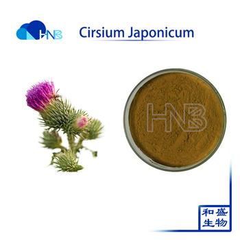 2017 Top quality Cirsium Japonicum Extract powder 10:1 Cirsium Japonicum P.E in china
