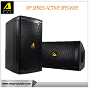 "SRX828SP 18"" Dual Self-Powered Subwoofer System Actpro powered speakers"