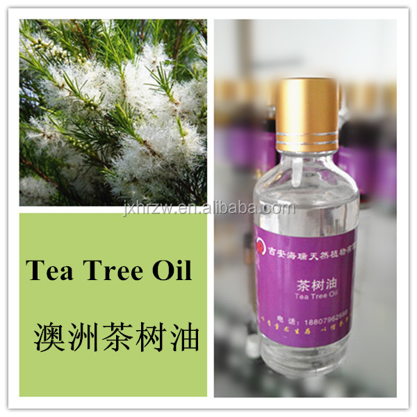 100% pure Australia tea tree Oil product
