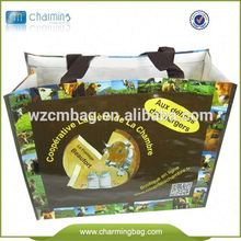 PP Non Woven Foldable Shopping Bag Non Woven Bags Made In Vietnam Export Worldwide