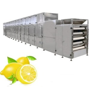 lemon dehydrate machine industrial fruit dryer, fruit and vegetable drying machine, fruit drying machine