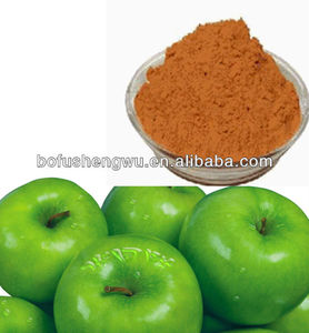 High Qualified and Pure Natural Organic Apple Extract Procyanidin B2 Powder