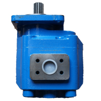 China hydraulic pump,famous brand gear pump company
