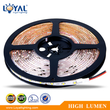 Warm white IP68 ip65 waterproof outdoor purple rechargeable rgb smart 2835 3528 5050 5630 smd 4m 5m 6m 10m led strip light