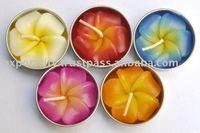 Tea light, tealigfht, T-Light plumeria frangipani flower candle