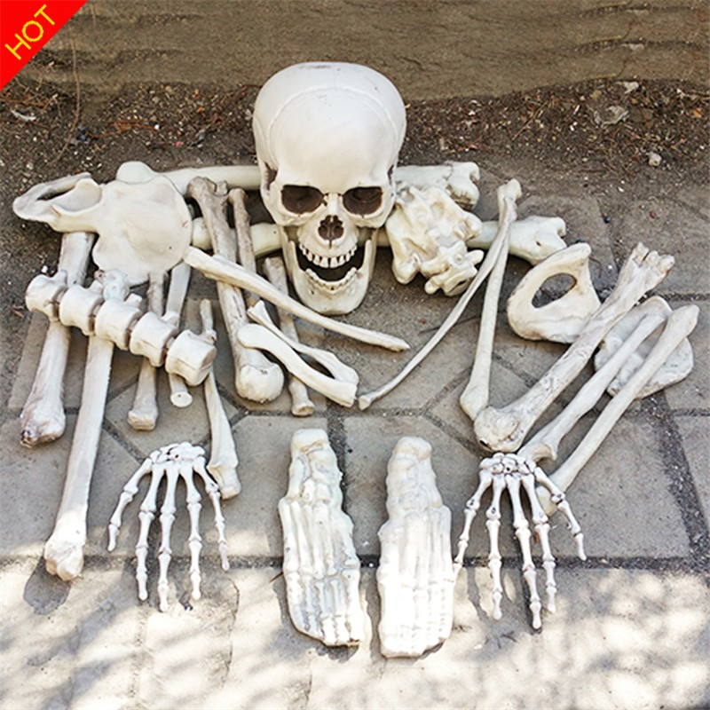 GB17002-bag of 28pcs bones