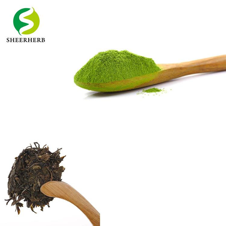 Natural Green Tea Extract Powder Best Instant Green Tea Powder - 4uTea | 4uTea.com