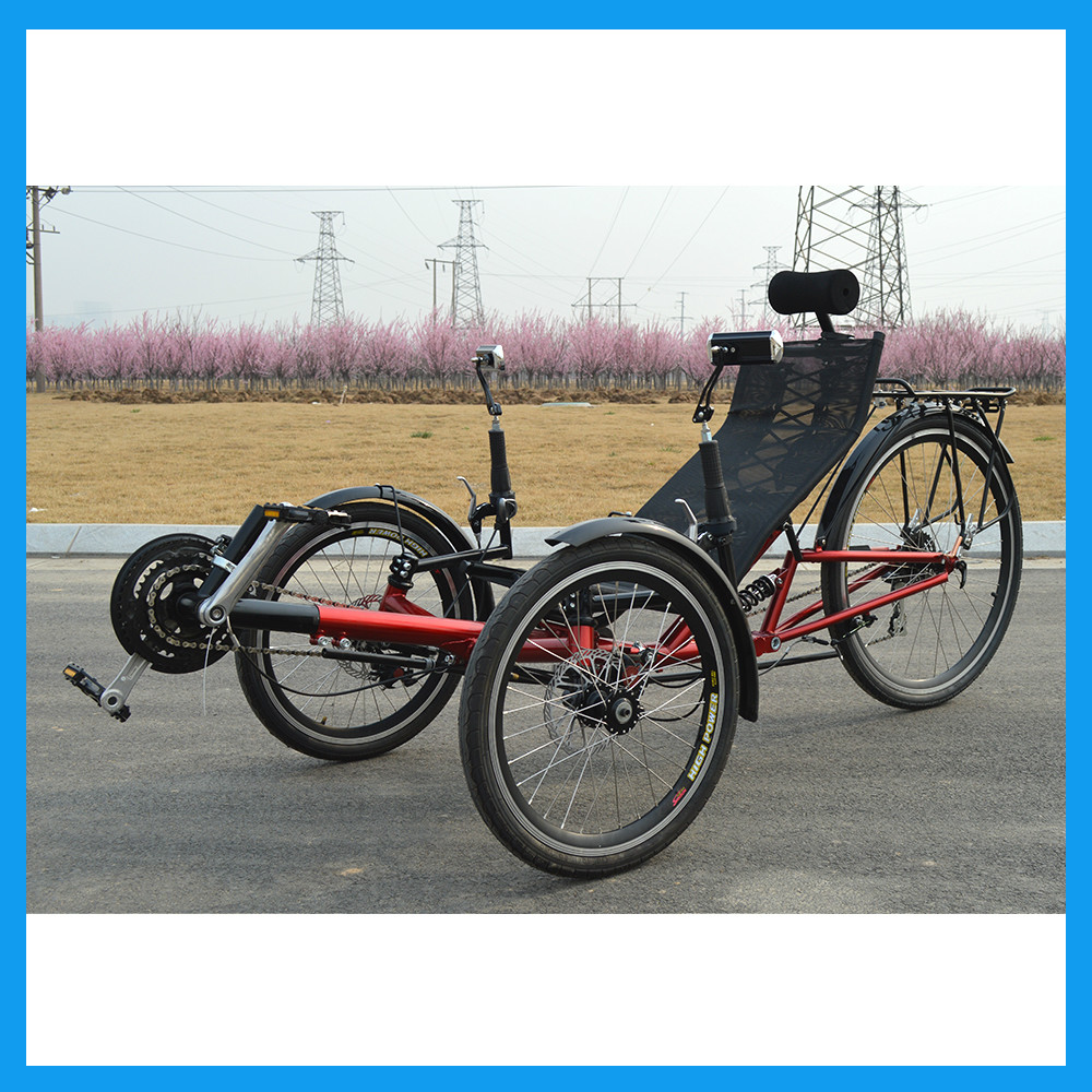 3 wheel recumbent style adult bike idea and