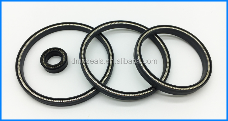 PTFE Lip Seal,Spring Energized PTFE Lip Seal