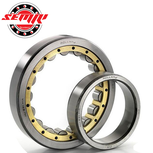 Cylindrical Roller Bearing RN307 Bearing size 35*68.5*21mm