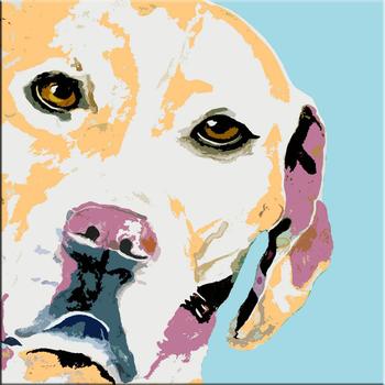 El Yapımı Soyut Köpek Kafası Yağlıboya Buy Köpek Resimlerisoyut
