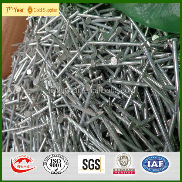 low price electro galvanized common nails made in china