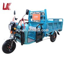 cheap cargo electric tricycle/Indian market cargo tricycle widely used