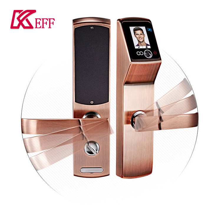 garden door lock face recognition rfid smart for hospital