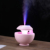 Best Gift Small Air Ultrasonic Humidifier Pendulum Wizard Projection Humidifier