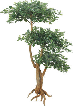High Quality Indoor Artificial Bonsai Tree Made In China,Green ...