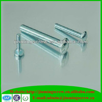 Galvanized bolts Din 603 carriage bolts