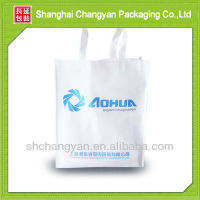 Non-woven advertising bag/Shopping Bags (NW-2912)