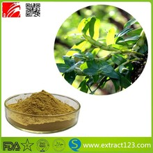 Popular hot sale of Salep Orchid Extract