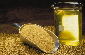 Refined Soyabean Oil