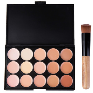 Makeup Tools Cosmetic Brush 15 color concealer Set