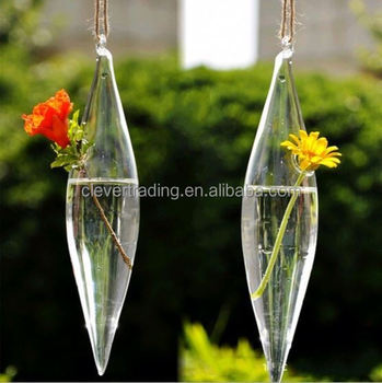 Air Plant Geometric Glass Terrarium For Wedding Centerpiece Decor
