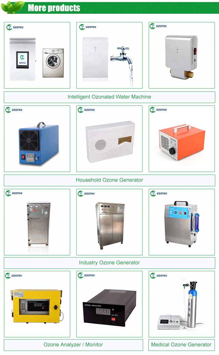 OZOTEK Ozone generator in air purifier 12V AP200 for air disinfection for Room/Office/Hotel/Car