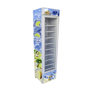 105L home usage display upright refrigerator with CE