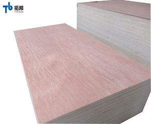 25mm plywood board price with competitive price