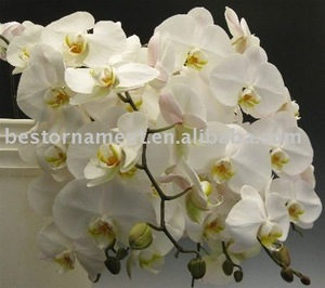 1pcs Artificial Silk Butterfly Orchid Flowers For Wedding Home Decoration