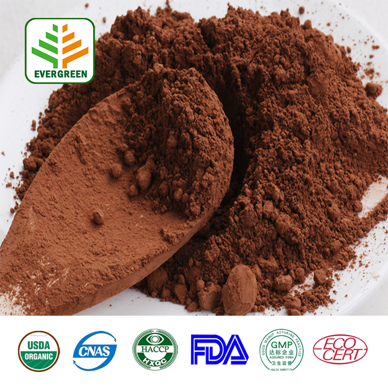 Food grade Cocoa shell extract pigment brown | alkalized cacao powder