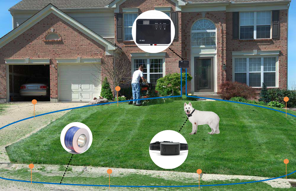 Stable Wired Rechargeable Electric Underground Dog Fence System