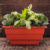 Self Watering 68 CM Flower Plastic Pot / Planter