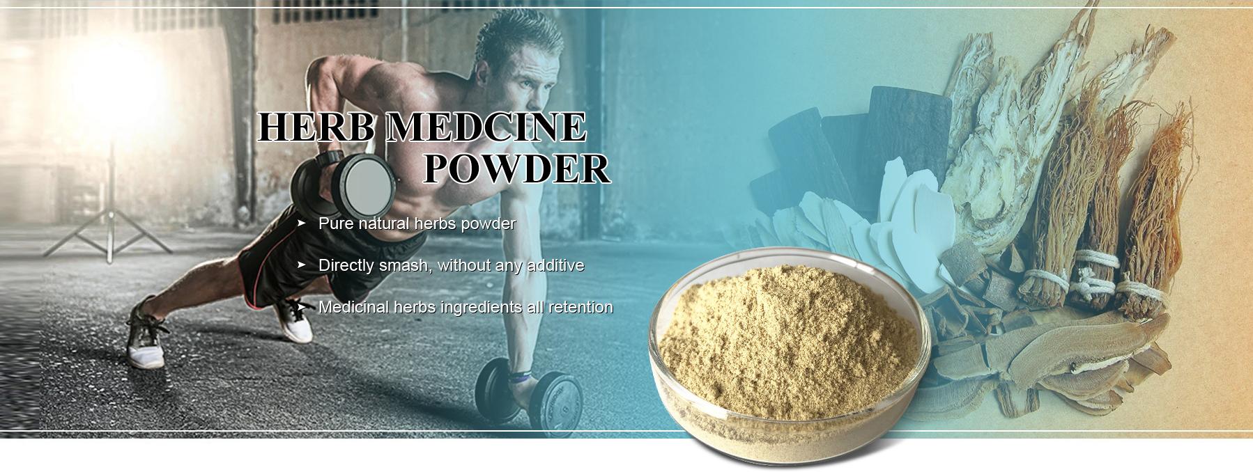 Panax Pseudo-Ginseng Extract Price Sanchi Extract Powder