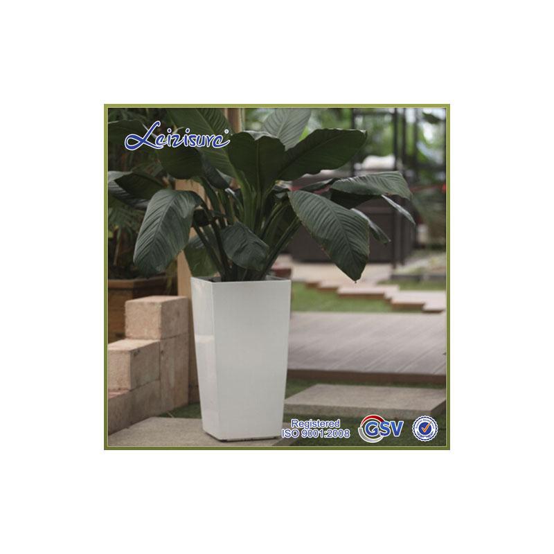 plantando rboles premium top venta de alta calidad de color blanco puro pp plstico maceta