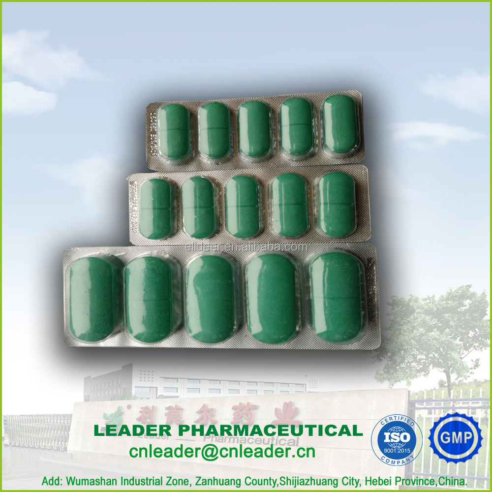 Albendazole tablet 300mg 600mg 2500mg antiscolic Antibacterial and dewormer Drugs animal use veterinary
