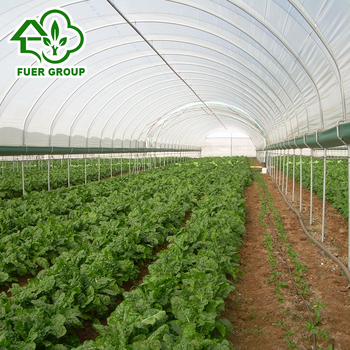 Vegetables planting PO film tunnel greenhouse for sale, View PO film tunnel  greenhouse for sale, fuer Product Details from Shandong Fuer Agricultural