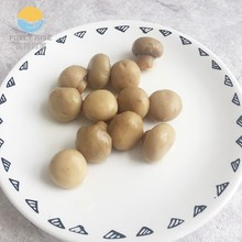 China origin Canned button mushroom/champignons export with best price