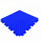 Durable soft and hard PP interlocking plastic floor tile