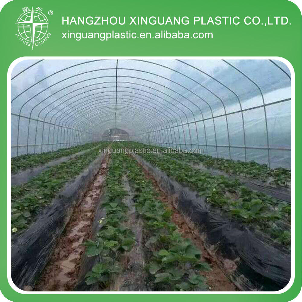 100 used greenhouse benches for sale greenhouse frame for s