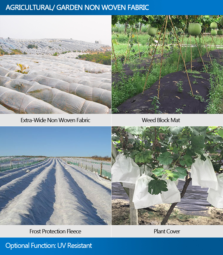 Agriculture Pp Nonwoven Weed Mat Control Fabric Garden Vegetable Garden Landscape Fabric View Vegetable Garden Landscape Fabric Synwin Product Details From Guangdong Synwin Non Woven Technology Co Ltd On Alibaba Com