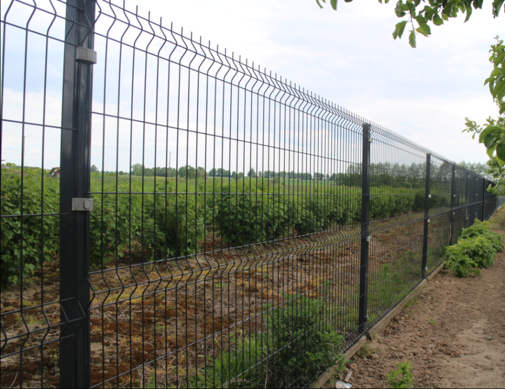 Cheap Decorative Metal Wire Garden Fencing Panels Factory