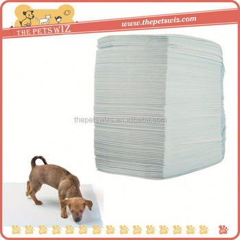 Pet Pee Pad Cc017 Custom Disposable Male Pet Diapers