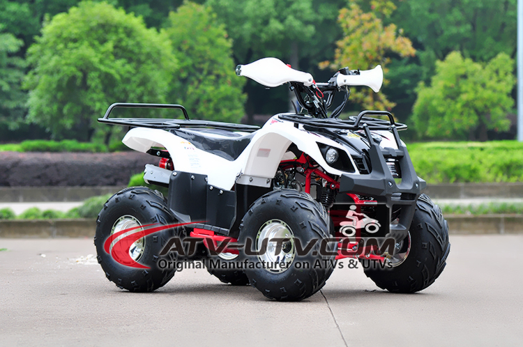 Single Cylinder Air-Cooled 4 Strokes 50cc Kids ATV Zhejiang OEM Cheap Kids ATV 110cc