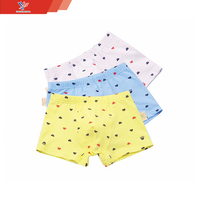 New fashion Kids panties cotton young boys children wholesale kids thong underwear